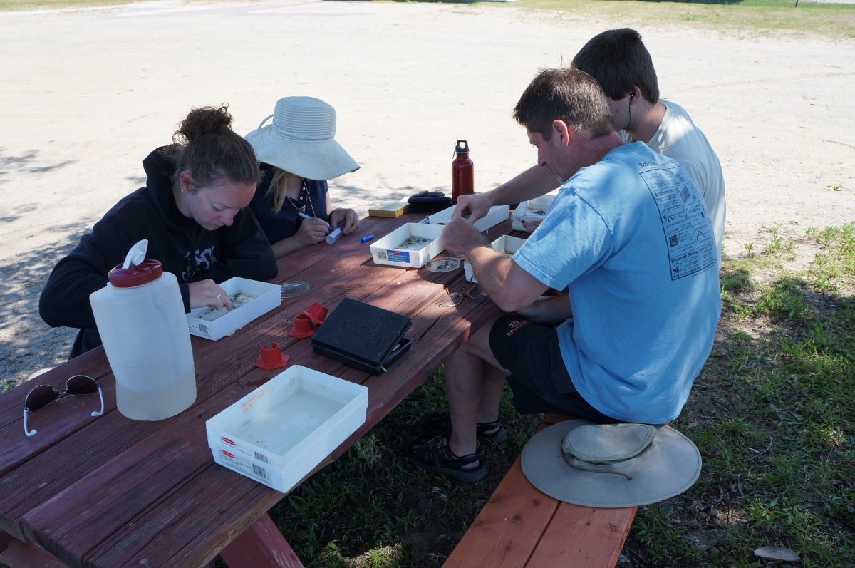 Four people sit at a picnic table, working on samples in small plastic trays.
