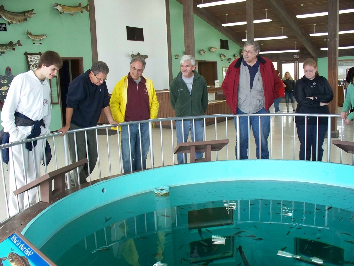A group of people stand around a large round aquarium in the floor, leaning on the railing. The wall behind them has mounted fish.