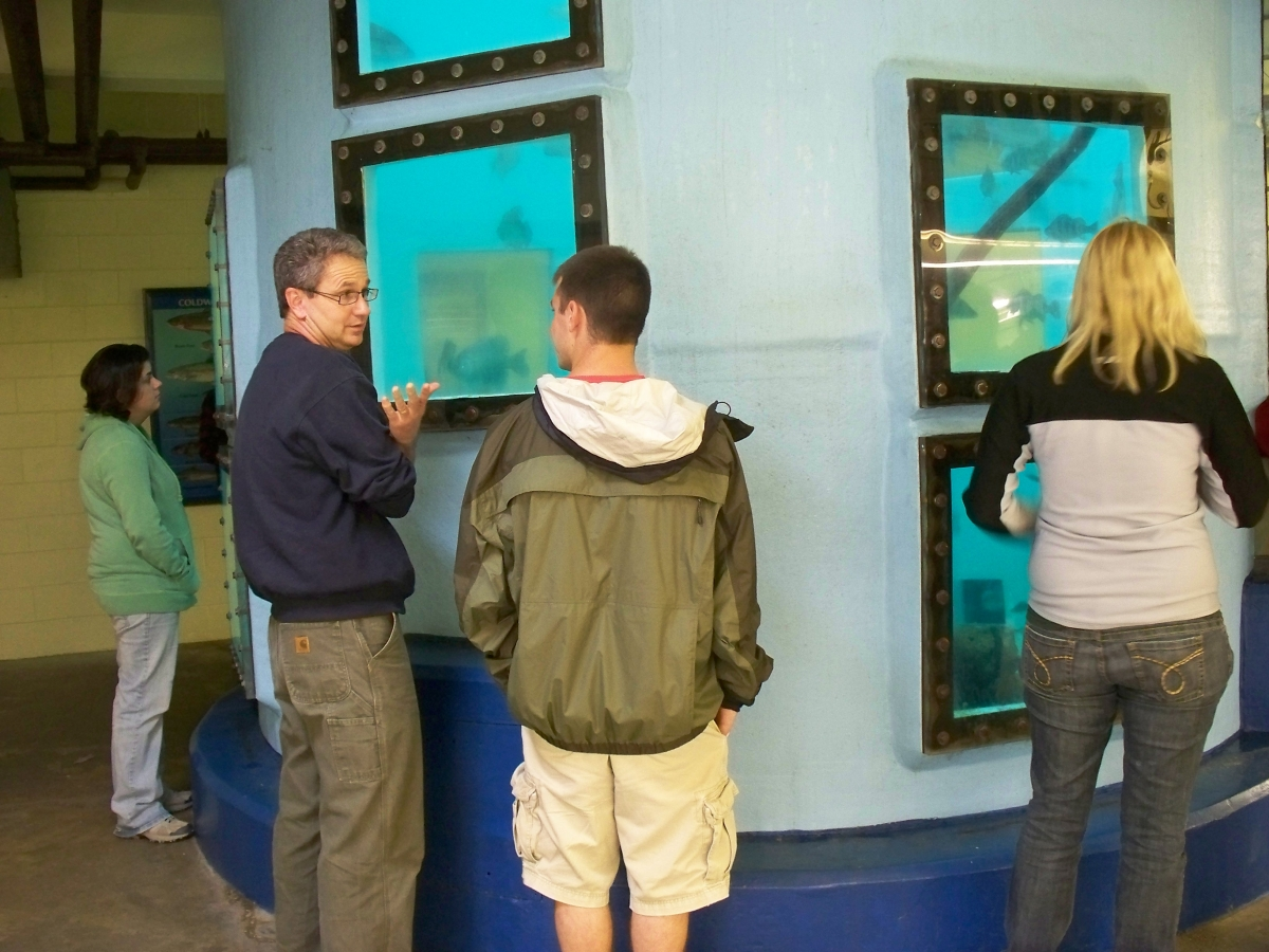 People stand around the bottom of a very tall fish tank, looking through various viewing windows