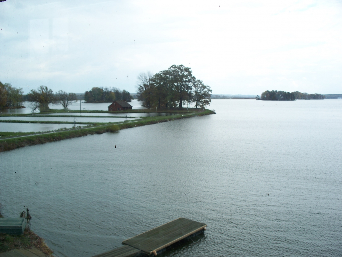 A body of water. On the left is a narrow piece of land with a large tree, a small building, and some rectangular ponds. At the bottom of the image is a wooden dock.