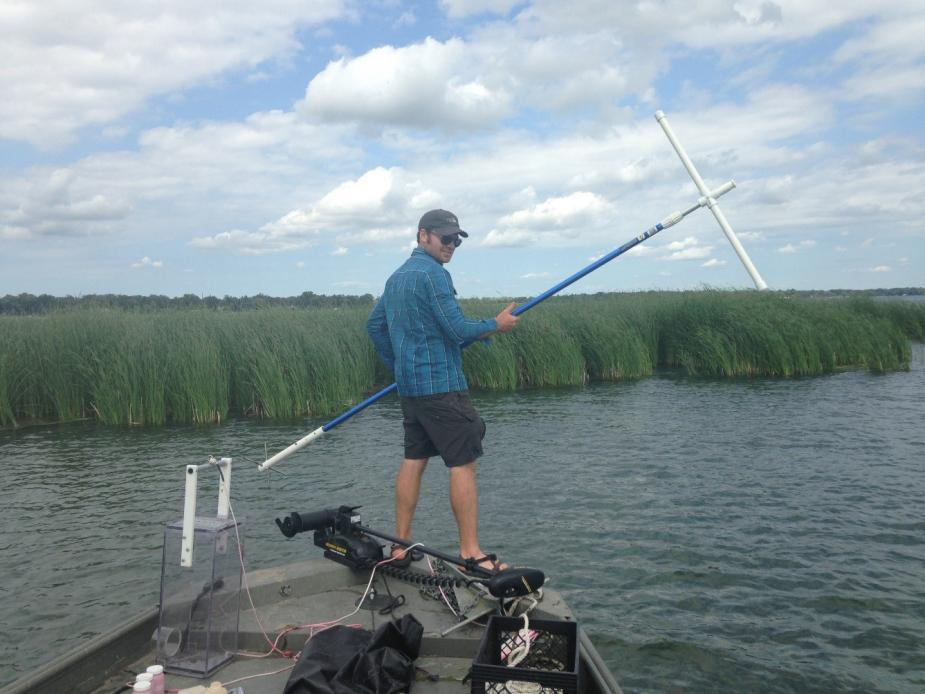 A person standing on the front of a boat by some reeds. The person is holding a long rod with a T on the end.