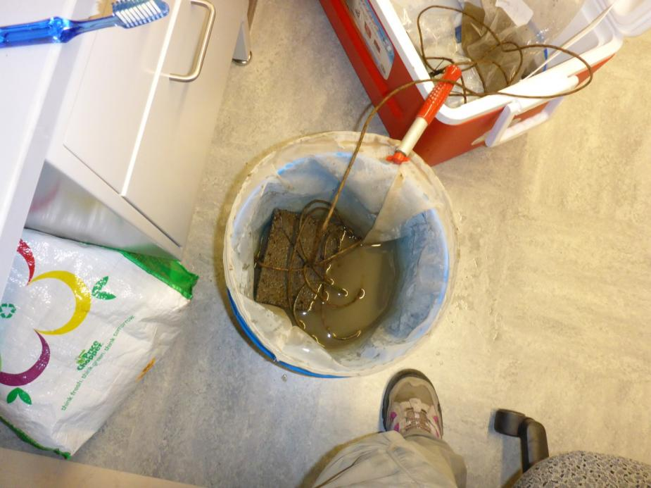 A net with a brick in it sits in a bucket in a lab