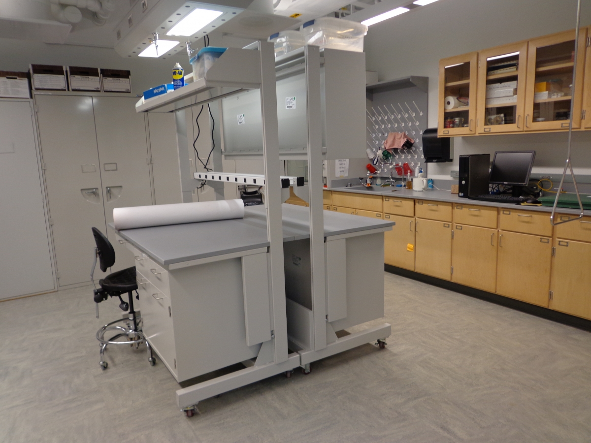 A lab with grey metal cabinets on the back wall, wooden cabinets and a counter top on the right wall, and two lab benches back-to-back in the middle of the room