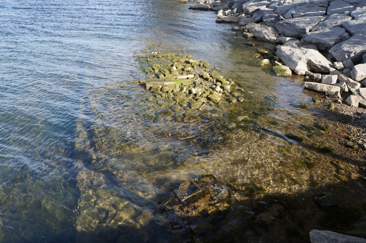 stone and wood cribbing covered in algae peeks above the water