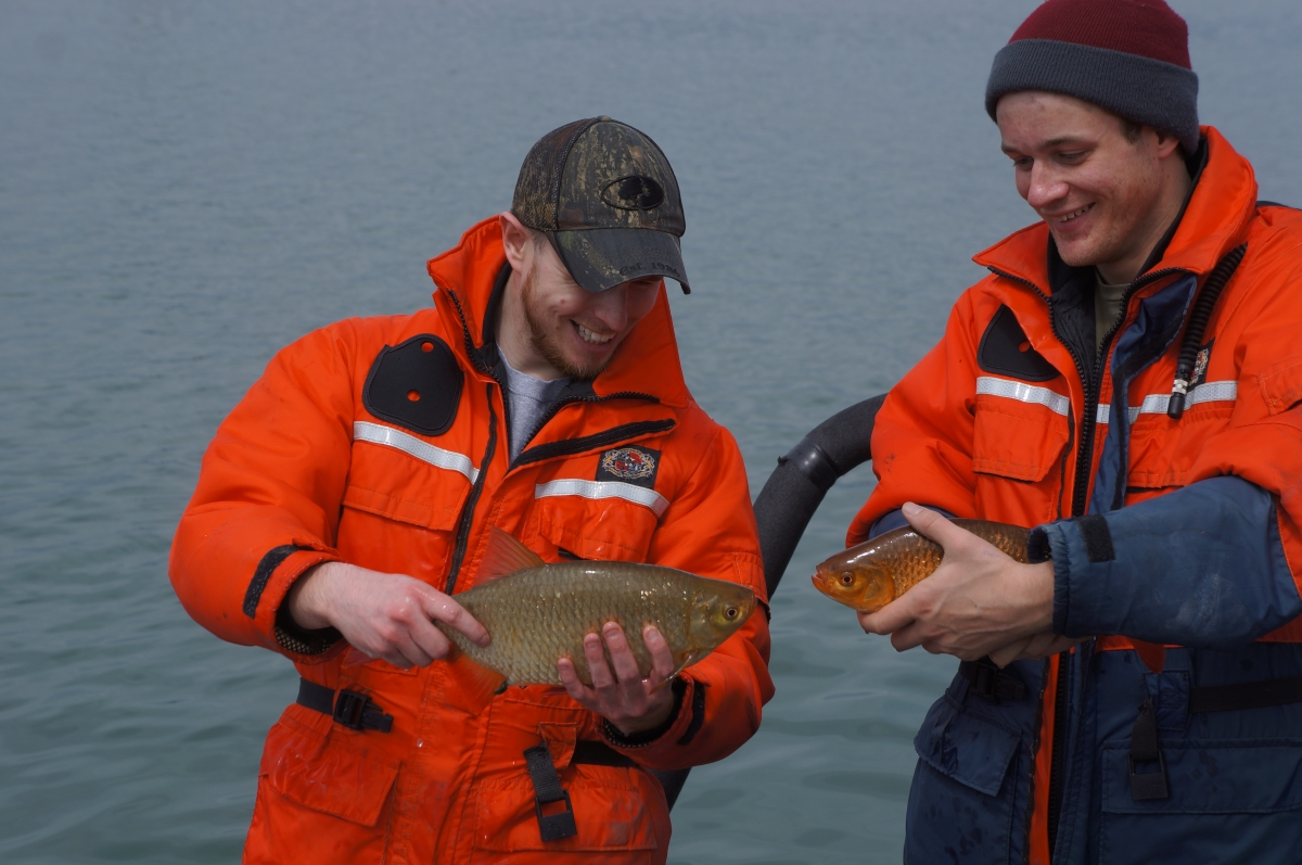 Two people stand in front of water and hold up medium sized fish. They appear to be the same kind of fish but one is tan and the other is orange