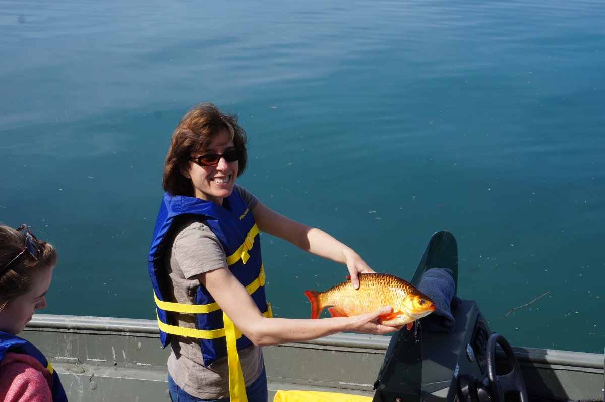 A person on boat holding up a medium-sized orange fish