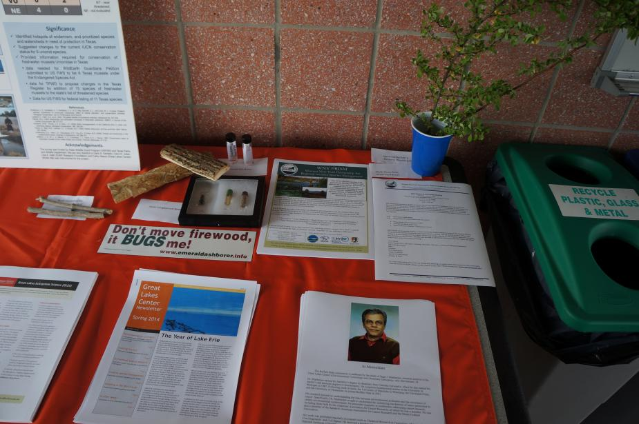 a table set up with papers, a poster, preserved bugs, and a small plant