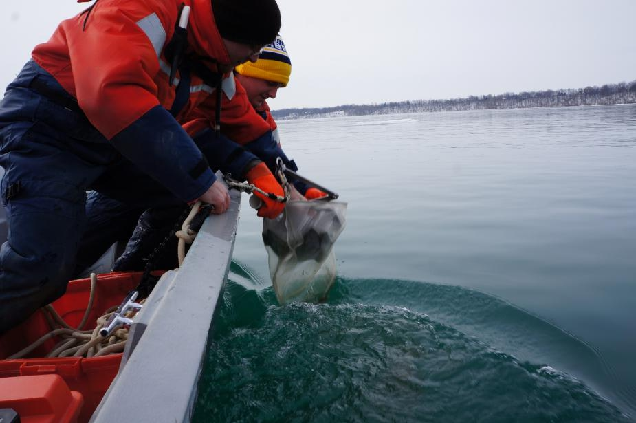 Two people work to bring in sampling equipment over the side of a boat