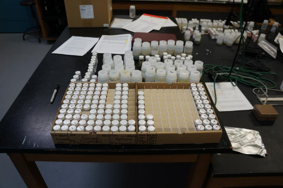 boxes with many vials of samples, and small bottles arranged behind the boxes