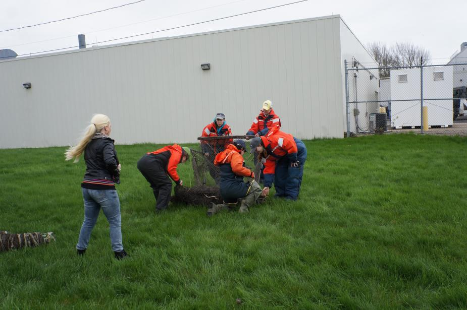 Students in flotation suits unfold a box-shaped trap net on land. A building is in the background.
