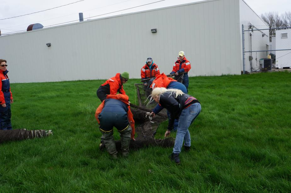 Students in flotation suits unfold a box-shaped trap net on land. Another person stands off to the left next to a rolled up net.