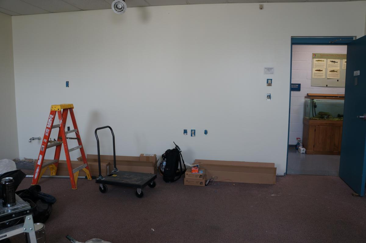 A room with some fresh paint on the walls. There are ladders and painting supplies. An open door leads to the hallway.