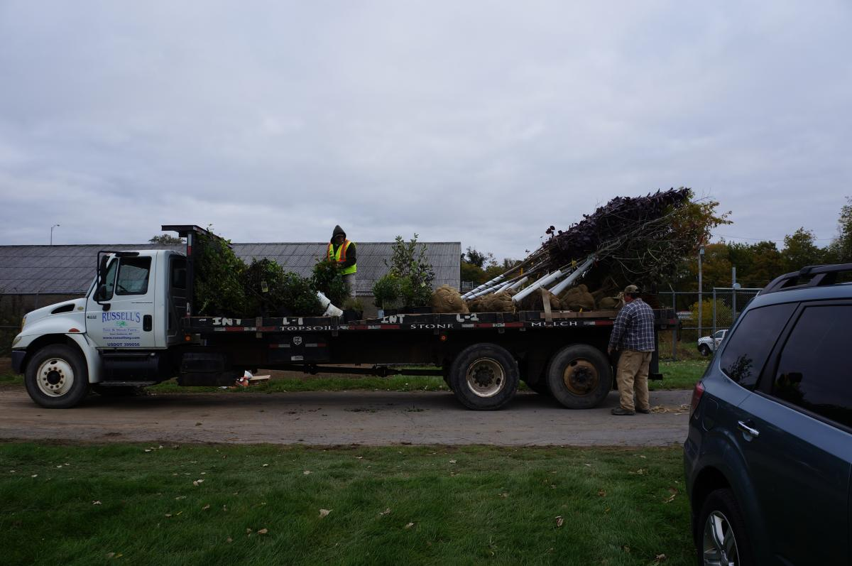 A flat bed truck with a variety of plants and trees on it, as well as two workers.