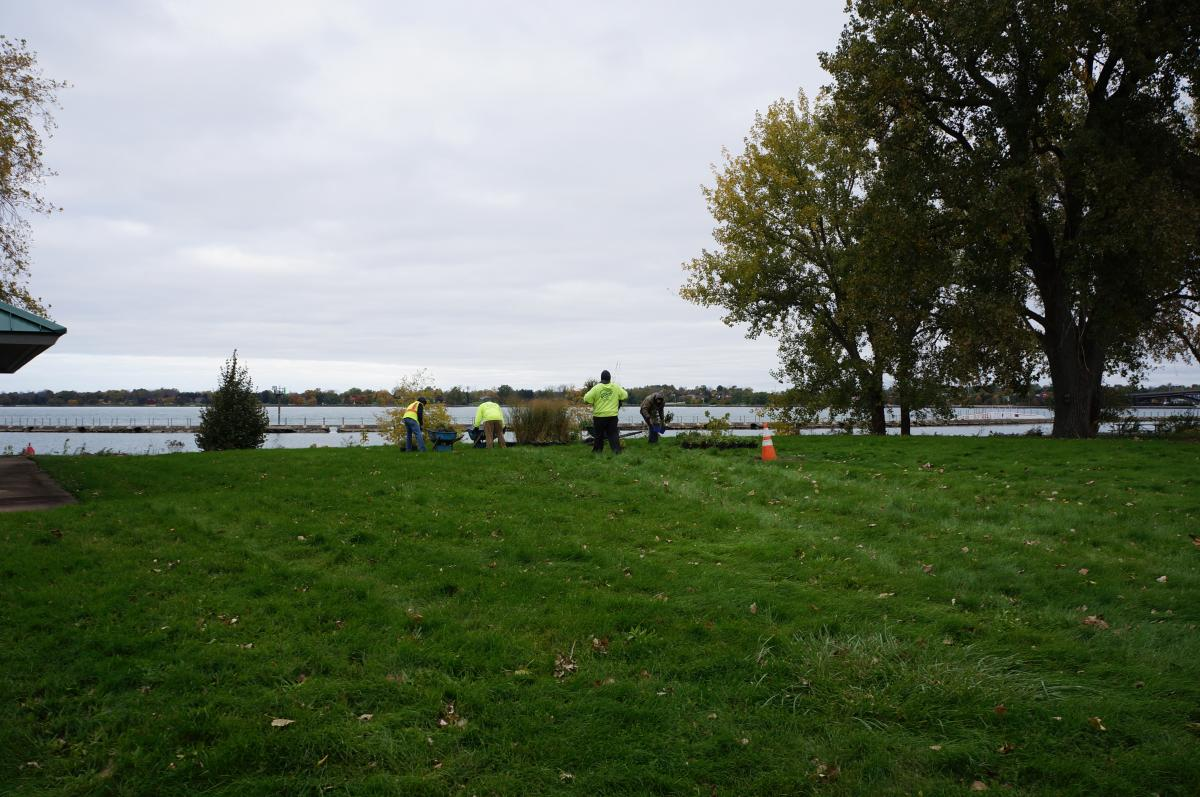 Landscapers arrange potted plants in the middle of a field near the waterfront.