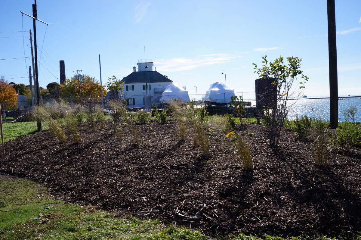 A plant bed with mulch near the waterfront.