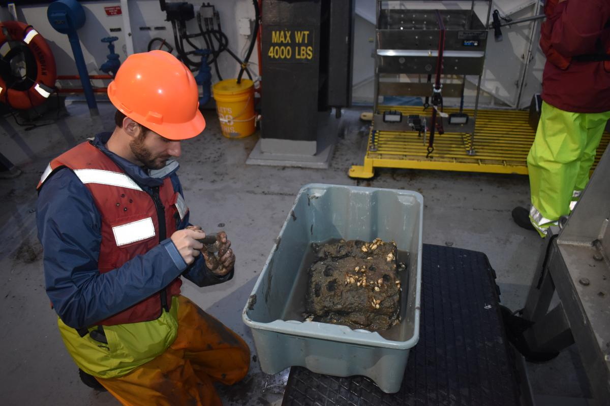 A person in a life jacket and a hardhat kneels on the deck of a boat next to a tub of mud and dreissenid mussels to put a sample in the jar in their hands.