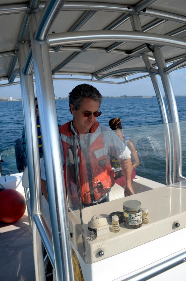 A person at the helm of a boat