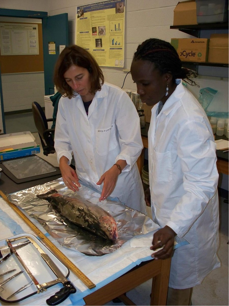 Two people in lab coats look at a large fish on a table.