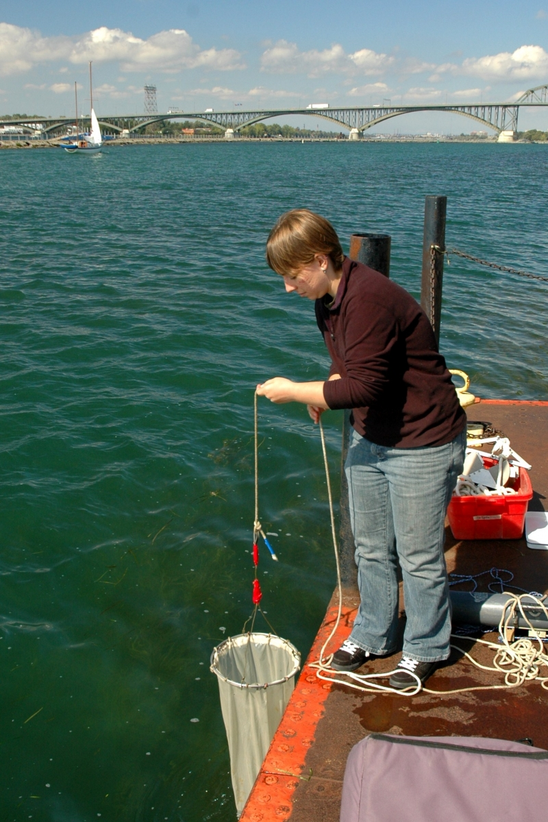 A person lowers a conical fabric net into the water