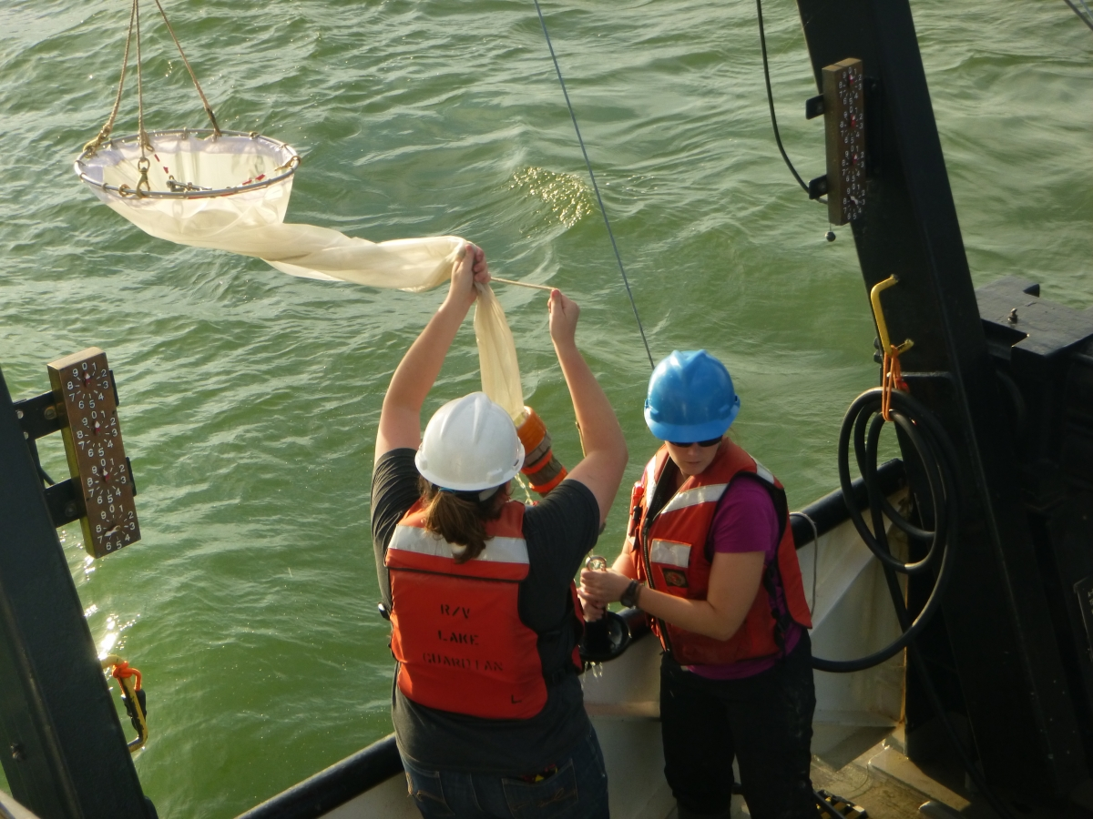 Two people in hard hats and life jackets pull a conical net over the side of a boat. The water is very green.