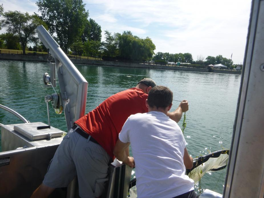 Two people pull a net in over the side of a boat.