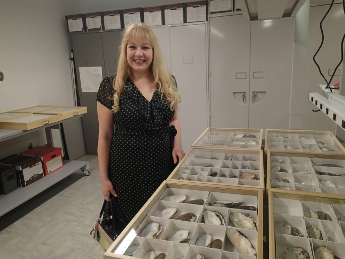 A person stands next to a display drawers with large shells set in individual compartments