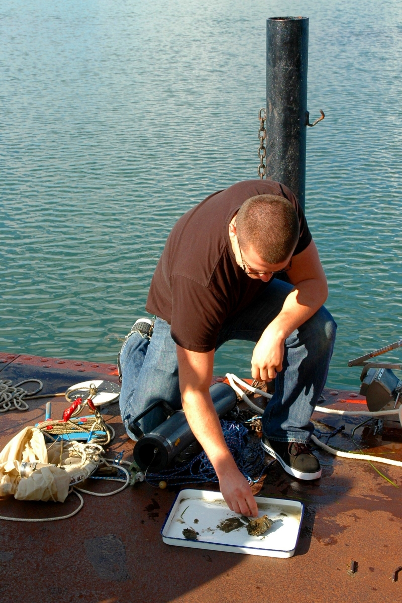 Student kneels down on the dock to examine something in a pan