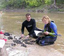 Two people in wet suits sit at the edge of the water with many large mussels. One is looking at a book.