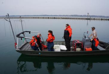 Preparing to electrofish from the electrofishing boat
