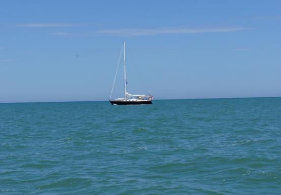 A sailbot sits on the water with its sails stowed
