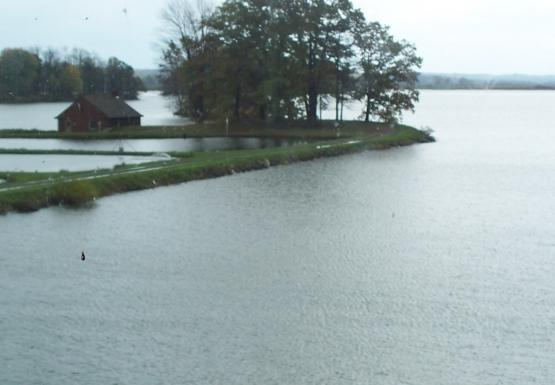A view of some water. On the left is a narrow piece of land with a large tree, a small building, and some rectangular ponds. At the bottom of the image is a wooden dock.