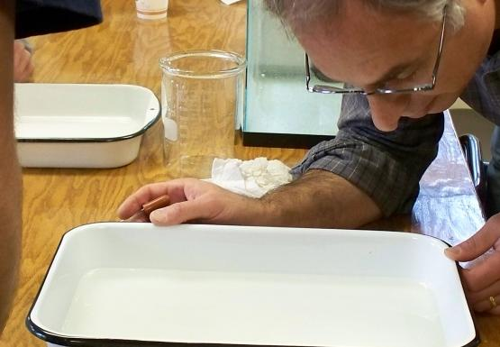 A person with glasses looks into a white porcelain pan filled with water