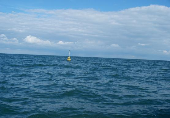 A buoy sits in the water. There are some waves.