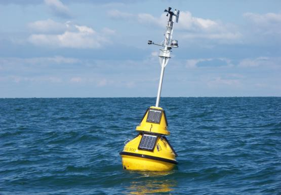 A yellow buoy in the water leans slightly to one side