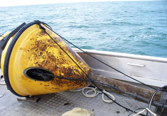 A yellow buoy lies on the deck of a boat. There is brown algae growing on the buoy.