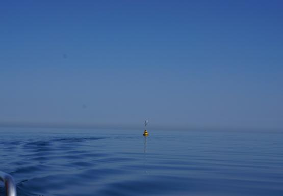 A yellow buoy sits in calm water