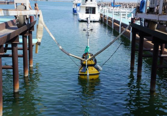 A buoy sits in the water at the end of a boat slip. Straps still connect it to a large metal frame.
