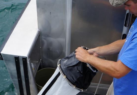 A person holds a conical net over the side of a boat.