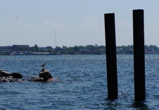 Two metal pilings stand in the water. There are some rocks in the water to the left, and a gull sitting on a rock.