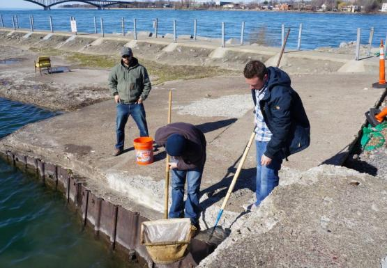 Three people working by the water. One person stands looking into a net on a pole, another holds a very long pole, and a third stands behind them with a bucket.