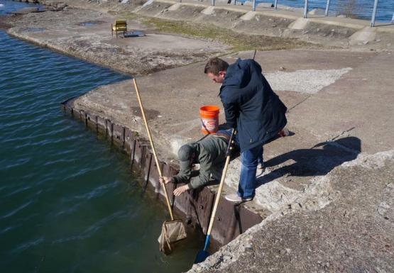 Two people work by the water. One is laying down on the edge of a concrete wall holding a net while the other person stands over them holding a long pole.