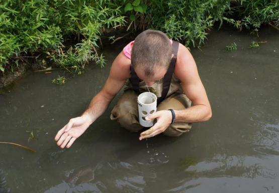 a person wearing chest waders crouches down in shallow water to look closely into a white cup