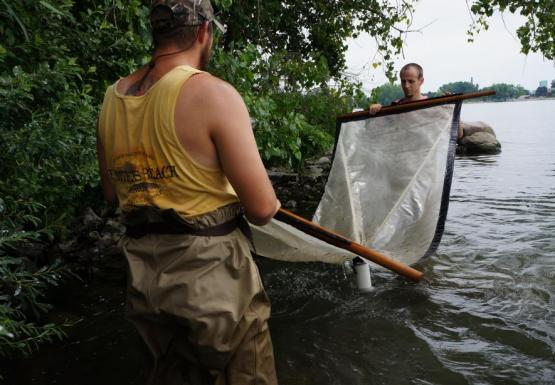 Two people wearing chest waders stand in water and hold opposite ends of an 8 foot long net flat above the water