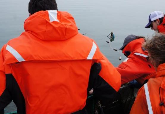 Students lean over the side of a boat to pull something on board