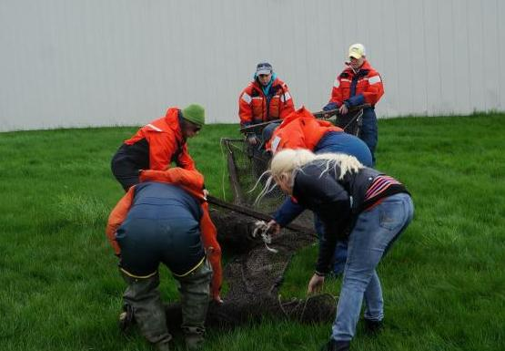 Students in orange float suits unfold a box-shaped trap net on land. Another person stands off to the left next to a rolled up net.