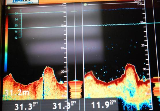 Image of the screen of a depth finder showing an area with an uneven lake bottom.