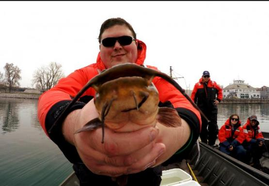 Student holds up a brown bullhead for a nice mugshot from the camera