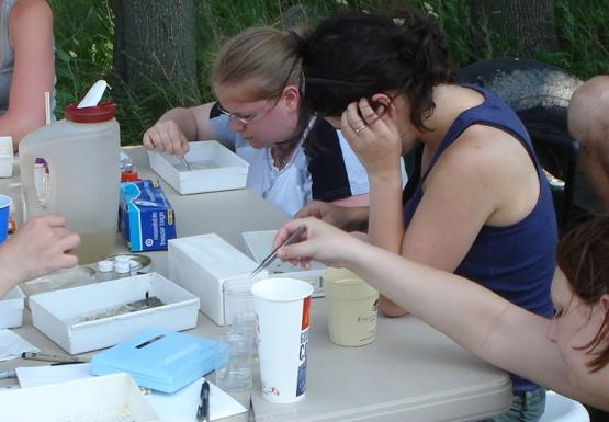 Six people sit at a table picking through samples in small white trays