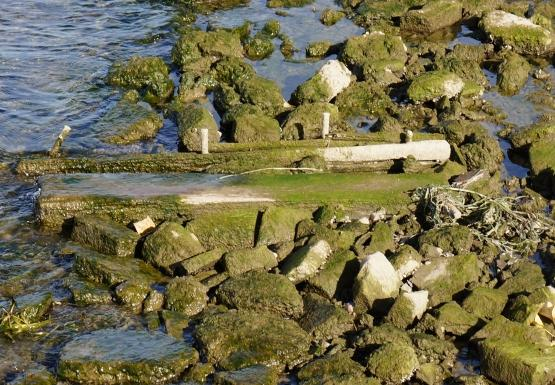 more stone and wood cribbing covered in algae peeks above the water