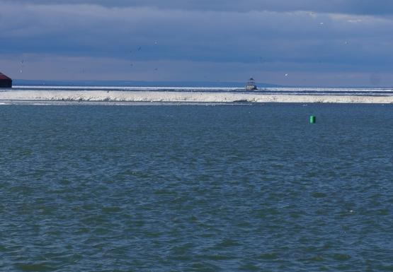 Ice from Lake Erie in the Niagara River, as viewed from the Field Station
